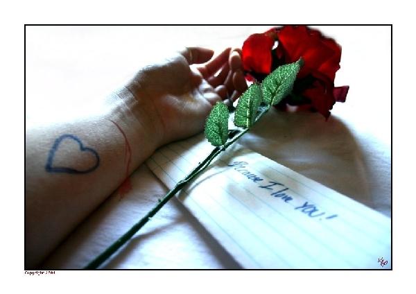 أكتب لكِ ما يجود به قلمي .. W6w2006071216595983de8995